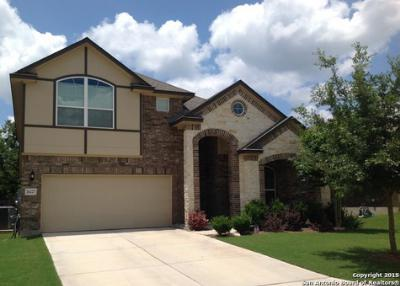 San Antonio TX Single Family Home For Sale: $320,000