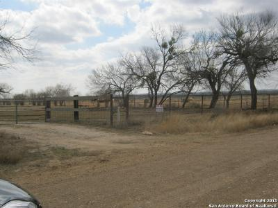 Pleasanton Farm & Ranch For Sale: 6502 Leal Rd