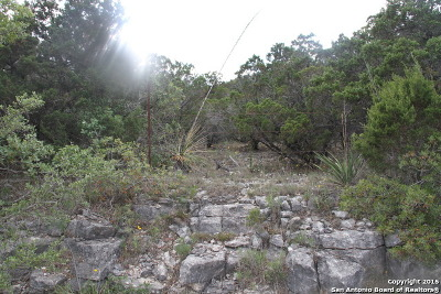 Residential Lots & Land For Sale: 2 Cielo Vista Dr