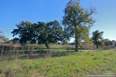 Elmendorf TX Farm & Ranch For Sale: $348,999