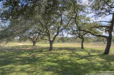 New Braunfels Farm & Ranch For Sale: Natures Way