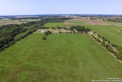 Guadalupe County Single Family Home For Sale: 3136 Bolton Rd