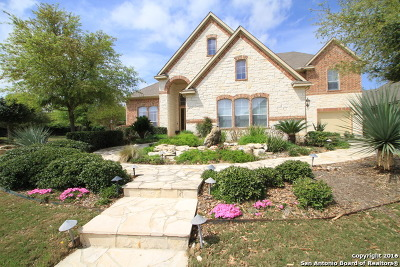 San Antonio Single Family Home For Sale: 21803 Burbank Hill