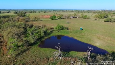 Farm & Ranch For Sale: 4004 Us Highway 181