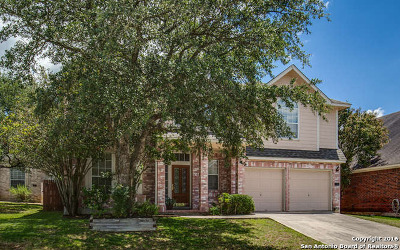 San Antonio TX Single Family Home Sold: $239,000