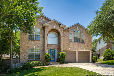 San Antonio TX Single Family Home Sold: $294,500