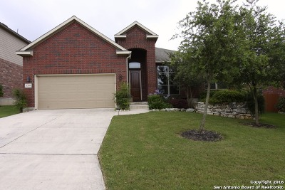 San Antonio TX Single Family Home Sold: $299,000
