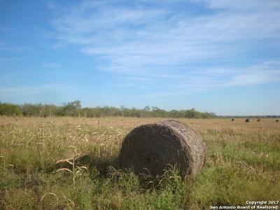 Farm & Ranch For Sale: 2695 Fm 1518