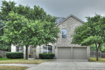 San Antonio TX Single Family Home Sold: $325,000