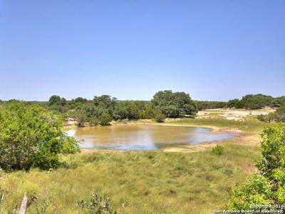 Farm & Ranch For Sale: 6075 Fm 1283