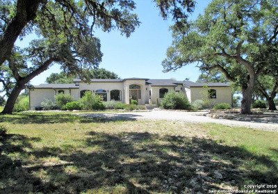 Bandera County Single Family Home For Sale: 180 Bridlegate Boulevard
