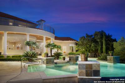 Boerne Single Family Home For Sale: 24902 Miranda Rdg