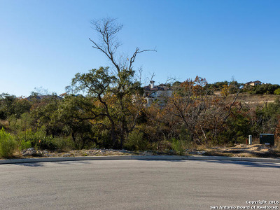 Residential Lots & Land For Sale: Blk 6 Lot 6 Messina Canyon