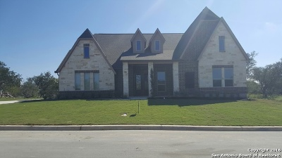 Medina County Single Family Home For Sale: 176 Jasemin Leaf