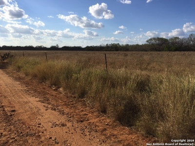 Atascosa County Farm & Ranch For Sale: Davis Switch Road(Cr349)
