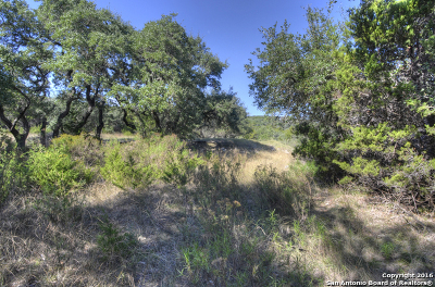 Comal County Residential Lots & Land For Sale: Lot 10 & 11 Village Top