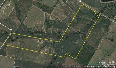 Atascosa County Farm & Ranch For Sale: Tbd Hwy 173