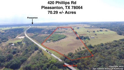 Atascosa County Farm & Ranch For Sale: 420 Phillips Rd