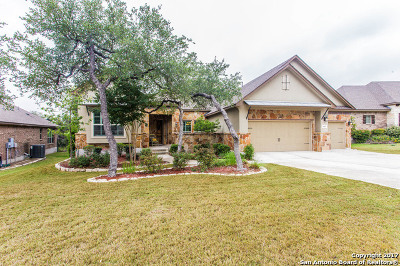 Helotes TX Single Family Home For Sale: $474,900