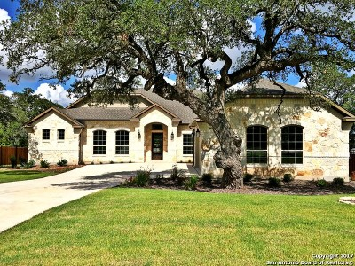Boerne Single Family Home For Sale: 28827 Balcones Creek