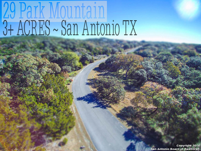 Residential Lots & Land For Sale: 29 Park Mtn W