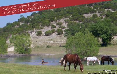 Farm & Ranch For Sale: 9061 Bandera Creek Road