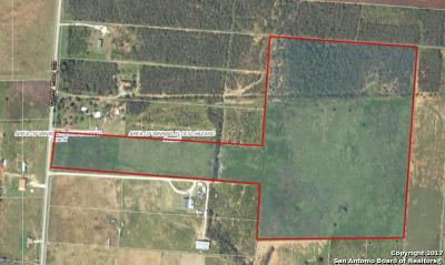 Jourdanton Farm & Ranch For Sale: 56 Acres Cr 303 Cr 303