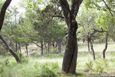 Boerne Residential Lots & Land For Sale: 27311 Ranch Creek