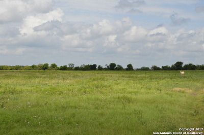 Guadalupe County Residential Lots & Land For Sale: 10.389 Acres Fm 612