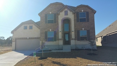 Single Family Home For Sale: 731 Firenze
