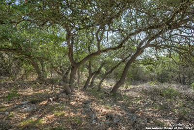 Residential Lots & Land For Sale: 311 Valley Lodge
