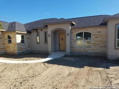 Single Family Home For Sale: 1321 Paladin Trl
