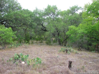 Comal County Residential Lots & Land For Sale: 1321 Palmetto Pt
