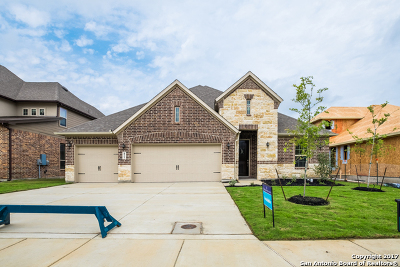 Cibolo Single Family Home For Sale: 821 Alpino