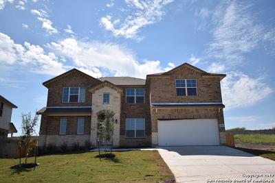 Cibolo Single Family Home For Sale: 213 White Rock
