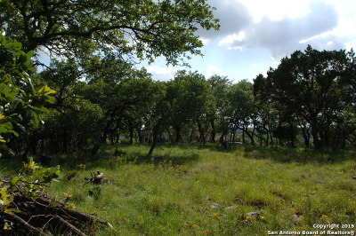 Boerne Residential Lots & Land For Sale: 8375 Tradition Trail