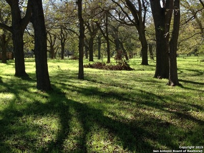 Guadalupe County Residential Lots & Land Back on Market: 127 Milagros