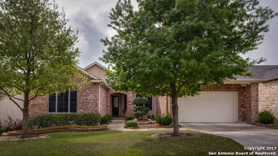 Single Family Home For Sale: 4226 Sweet Sand