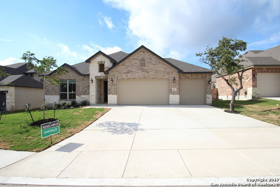 Bexar County Single Family Home For Sale: 27011 Catmint Cove