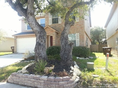 Boerne Single Family Home For Sale: 7610 Lost Creek Gap