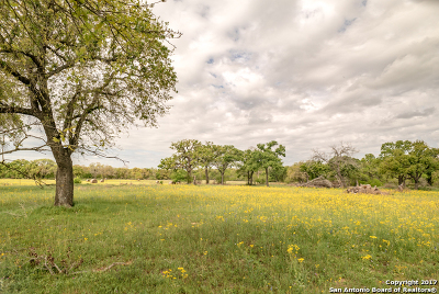 Farm & Ranch For Sale: 595 Fm 539