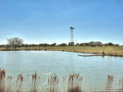 Farm & Ranch For Sale: 338 Ammann Rd