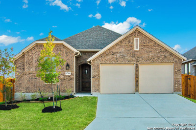 Boerne Single Family Home Price Change: 9716 Innes Place