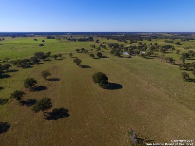 Wilson County Farm & Ranch For Sale: 2110 County Road 438