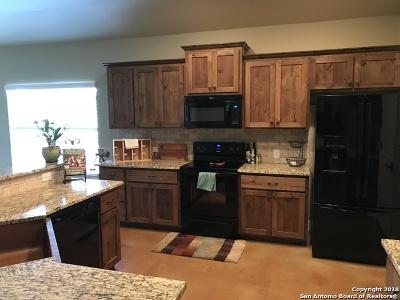 Saddlehorn Single Family Home For Sale: 119 Dover Downs