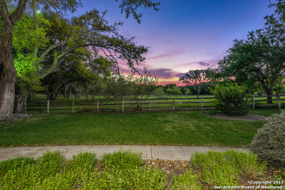Single Family Home For Sale: 100 Hill Country Ln