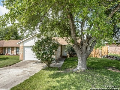 Schertz Single Family Home For Sale: 3505 Turnabout Loop