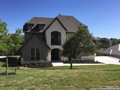 San Antonio Single Family Home For Sale: 1702 Palmer View