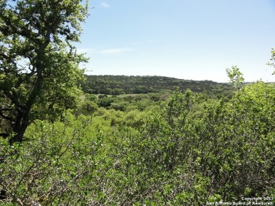 Comal County Residential Lots & Land For Sale: 192 Macaw Ln