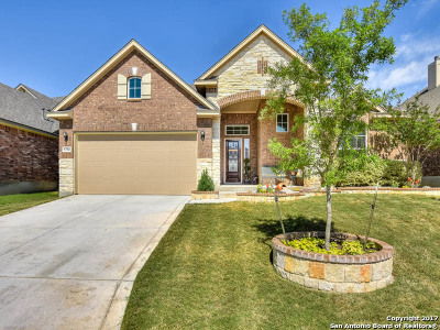 Helotes Single Family Home For Sale: 9750 Helotes Hill